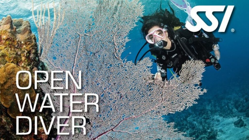 bali cours open water diver