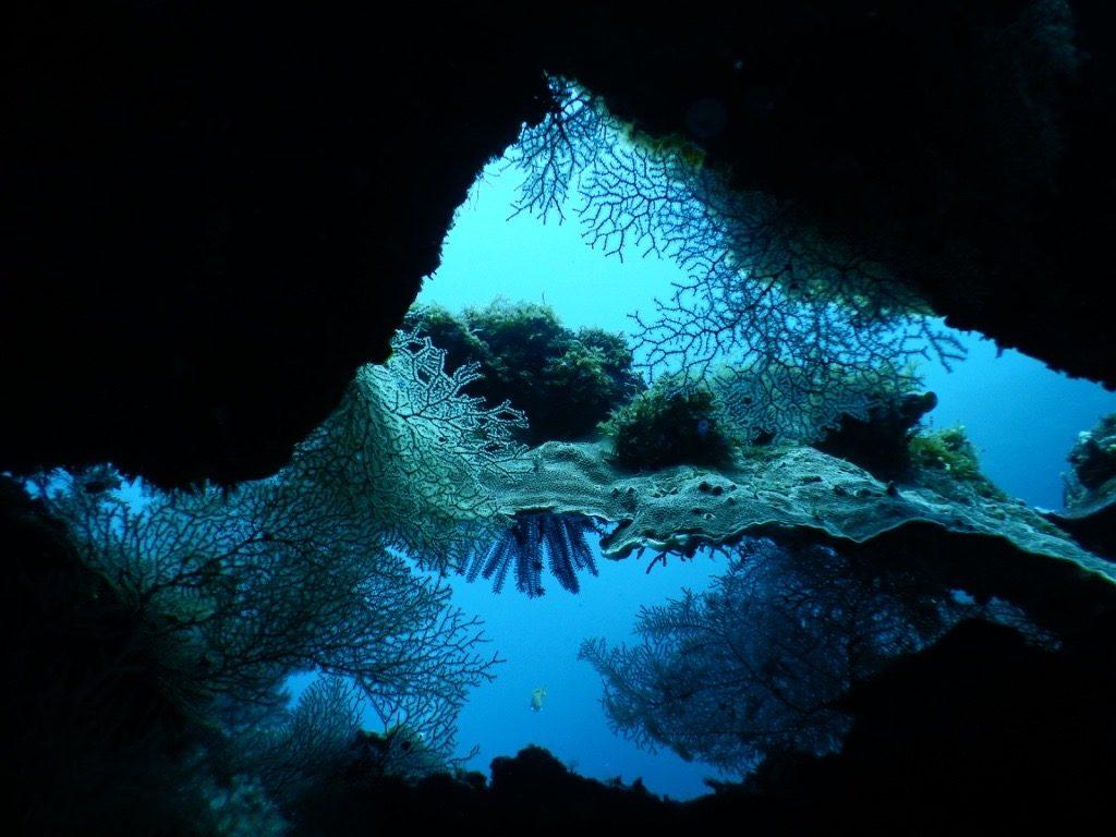 plongée Bali Tulamben